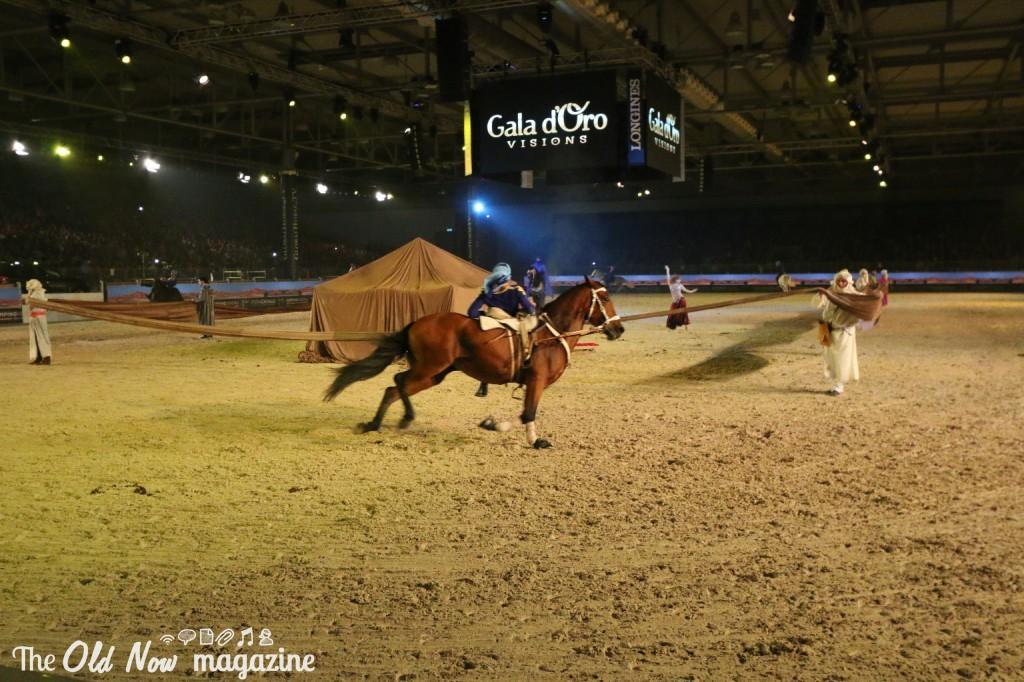 verona cavalli 2014 gmc - photo#7