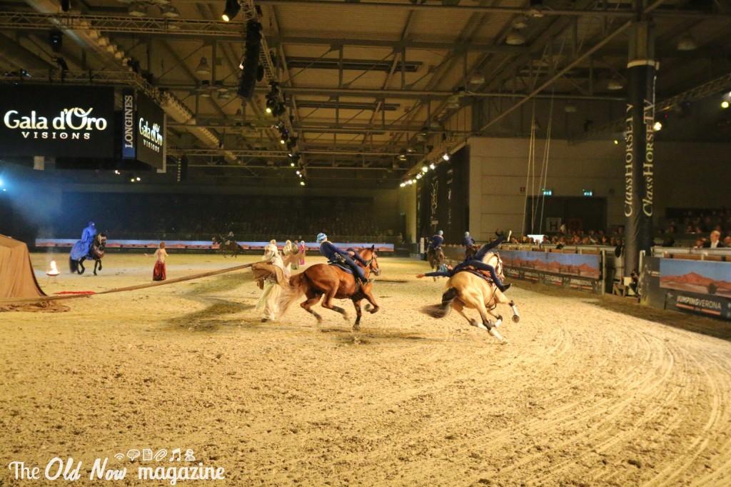 verona cavalli 2014 gmc - photo#4