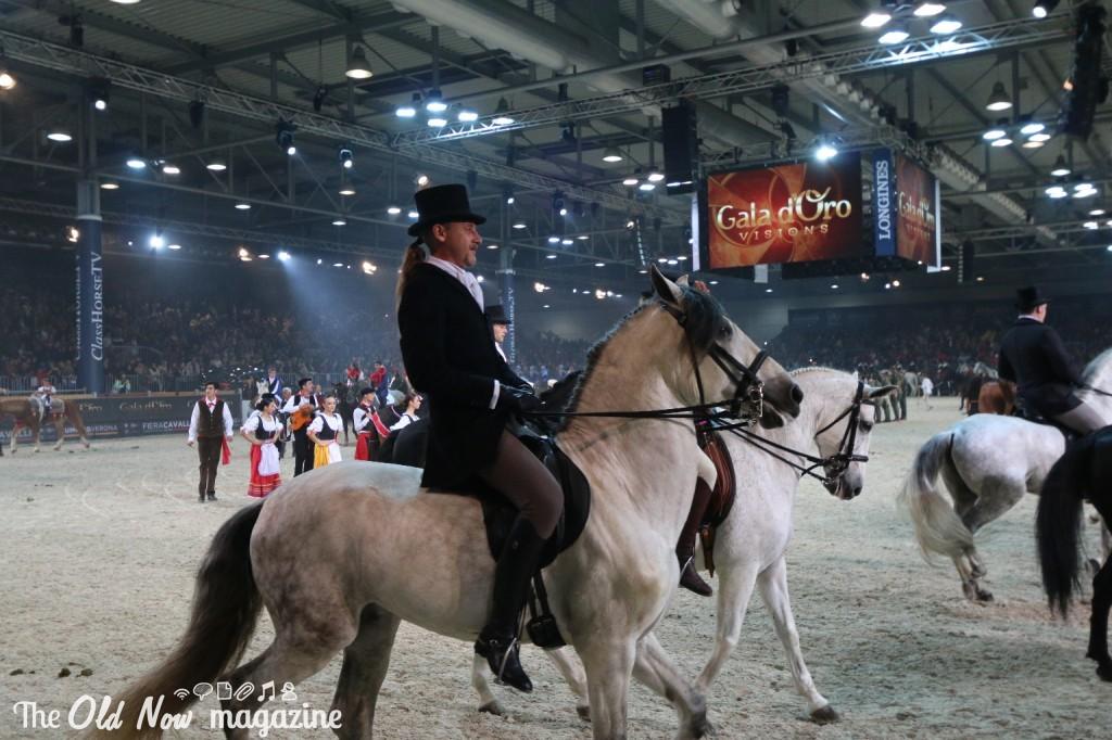 verona cavalli 2014 gmc - photo#6