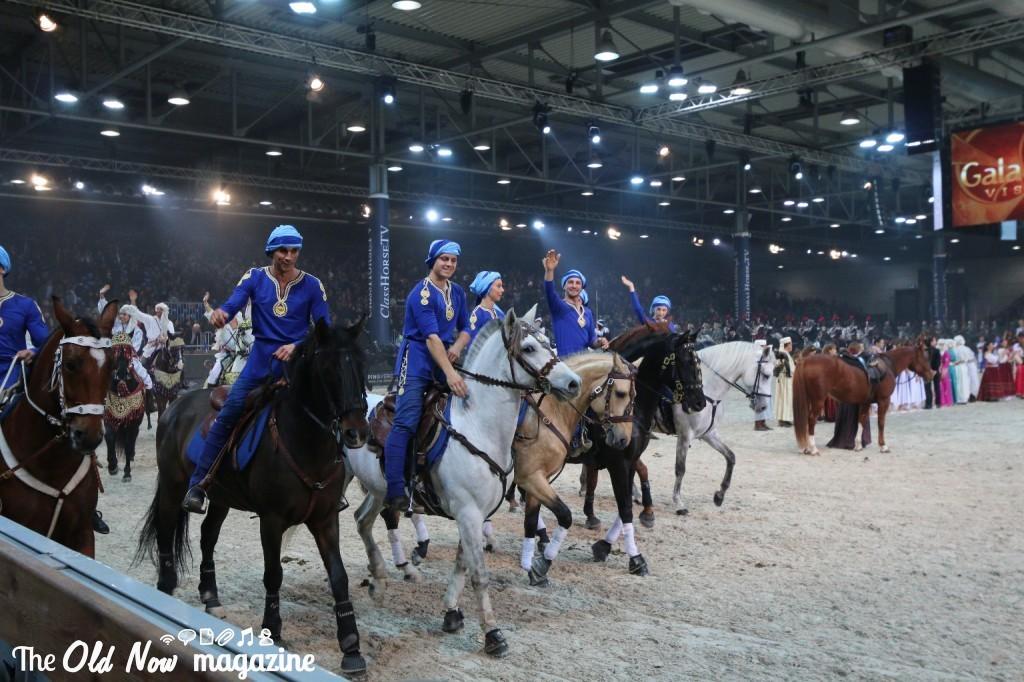 verona cavalli 2014 gmc - photo#18