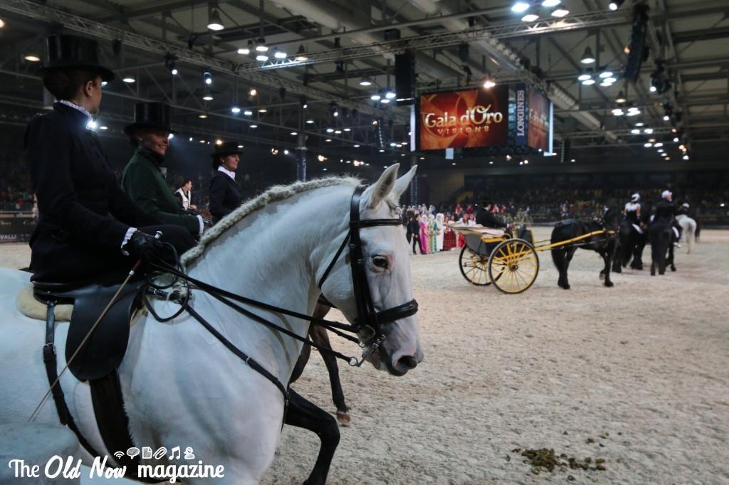 verona cavalli 2014 gmc - photo#9
