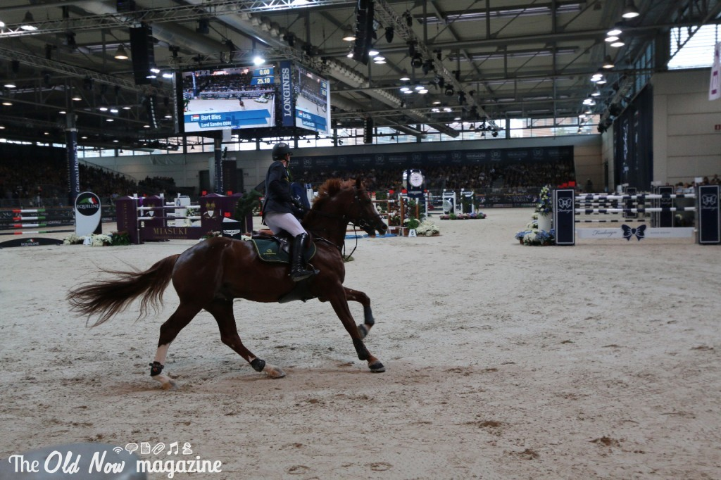 verona cavalli 2014 gmc - photo#5
