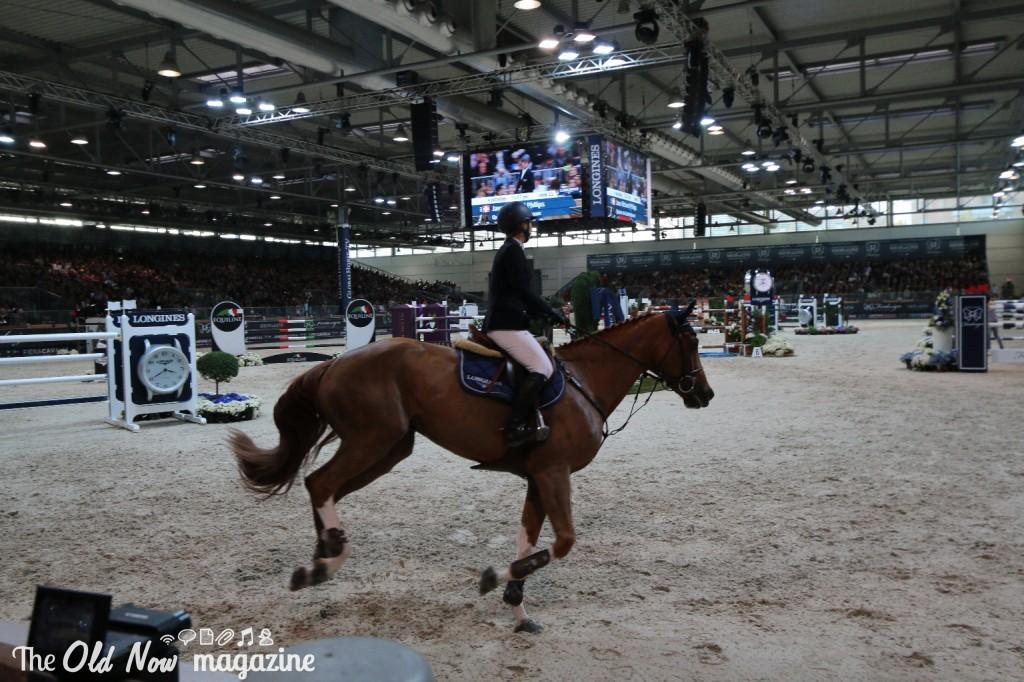 verona cavalli 2014 gmc - photo#2