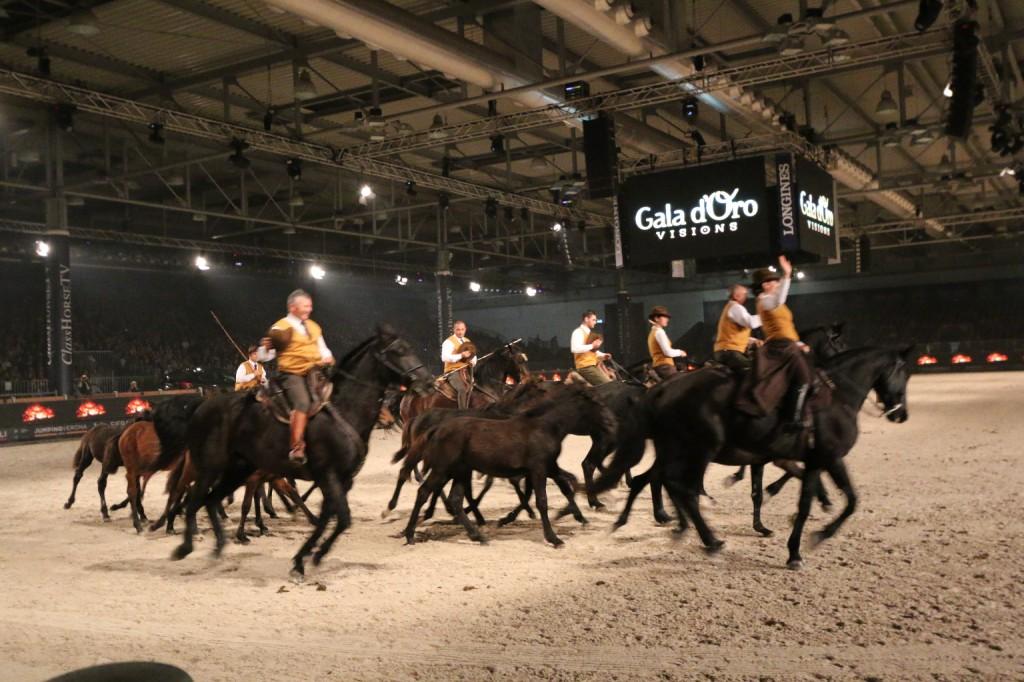 verona cavalli 2014 gmc - photo#14
