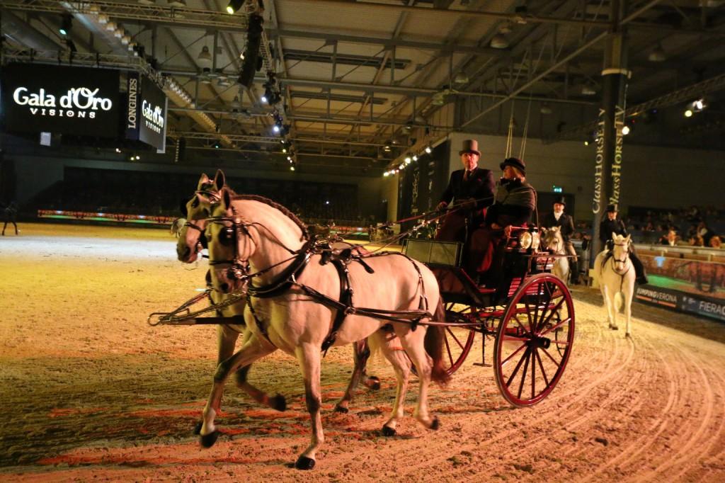verona cavalli 2014 gmc - photo#21