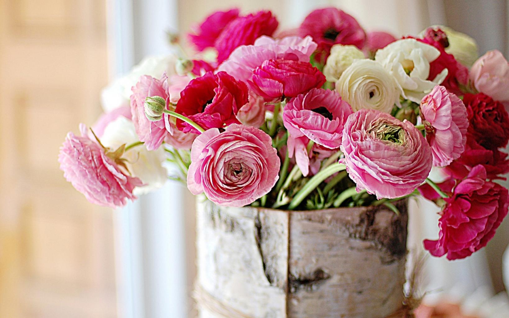 piony-cvety-kora-berezovaya
