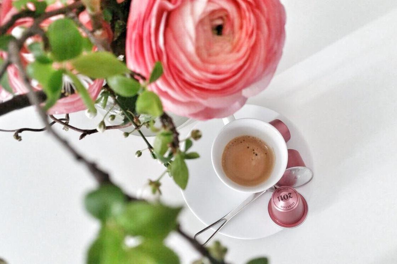 Nespresso-Expertmilk